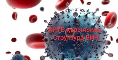 Структура ВИЧ